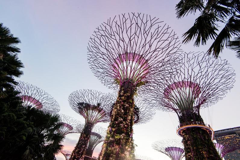 singapore_0486